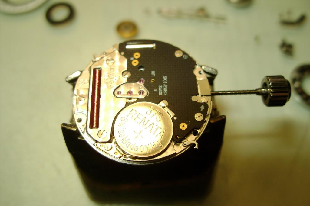 DSC07896omegaSM